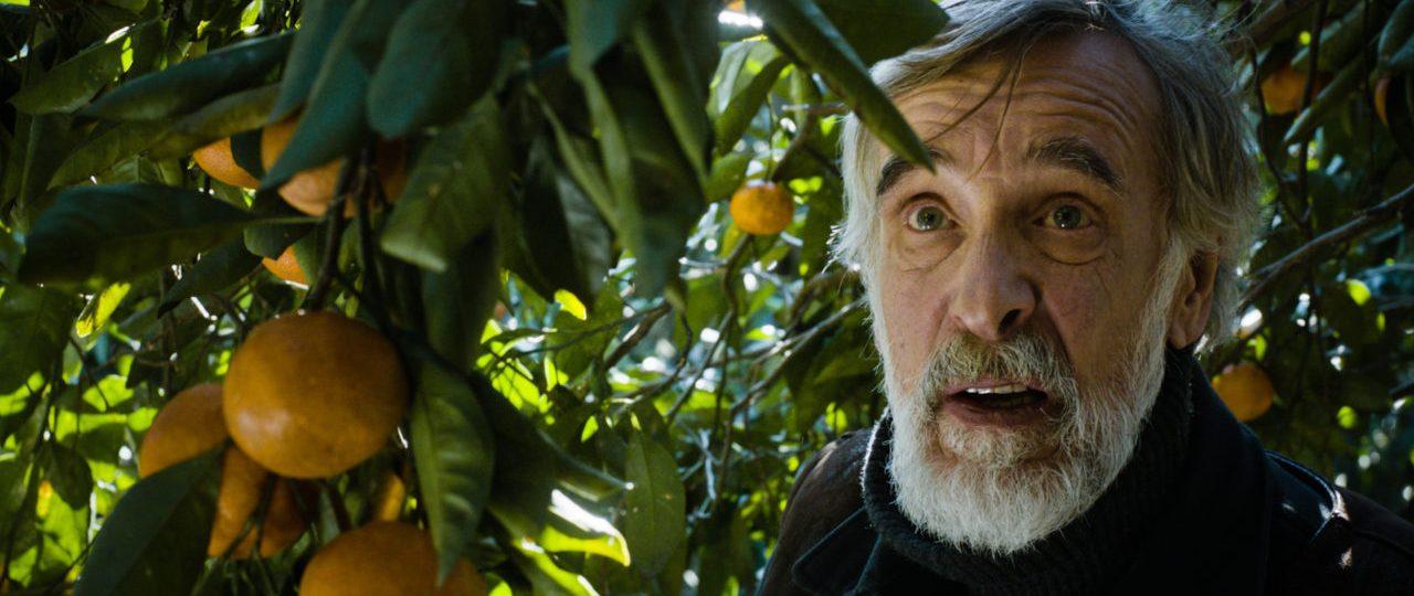 รีวิว: Tangerines