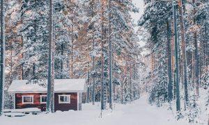 แนวคิดการเดินทางของฟินแลนด์